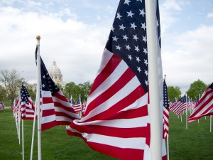 Flags in front of the capitol